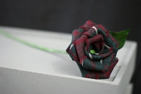 Pick your own colour Tartan Rose